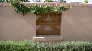 """Niagara"" grapevine on courtyard wall edged with lavender hedge and quaint french shutters at Lavender and Thyme Cottage"